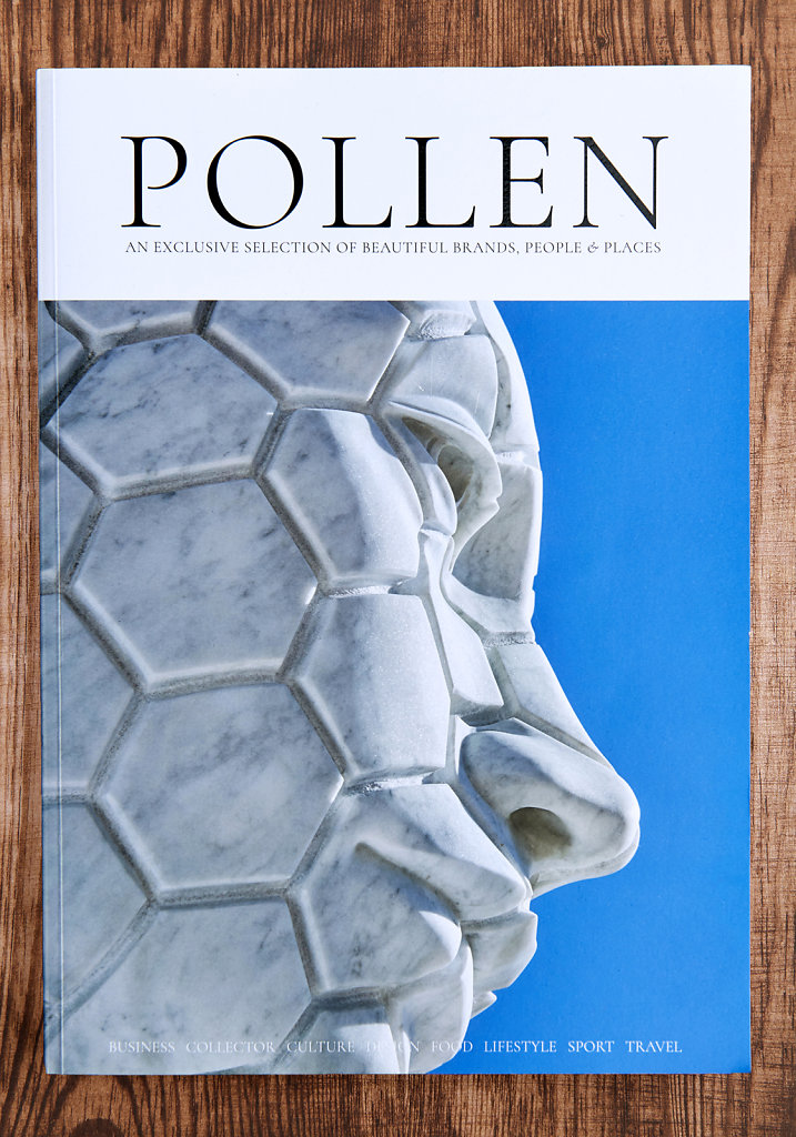 Cover Pollen Magazine